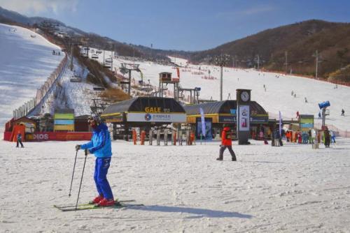 Konjiam là địa điểm trượt tuyết yêu thích gần thành phố Seoul. Ảnh: lonelyplanet